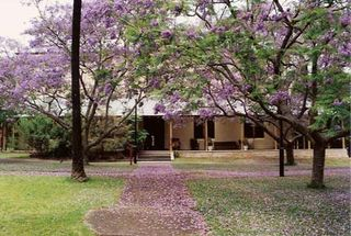 NSW_Writers__Centre_low_res