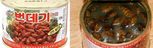 Canned-chrysalis-300x94
